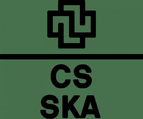 Credit Suisse Logo 1968