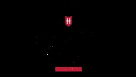 Holsten logo tumbs