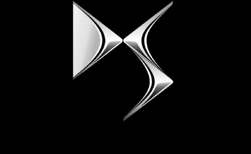DS Logo 2009